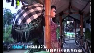 DIAN ANIC TARLING 2013 JANGAN ASEM Video