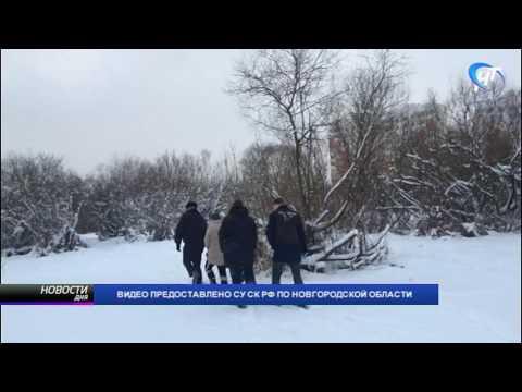 По горячим следам было раскрыто убийство несовершеннолетней жительницы Великого Новгорода