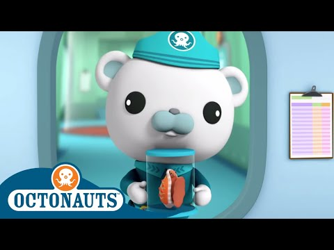 Octonauts - Dizzy Barnacles | Cartoons For Kids | Underwater Sea Education