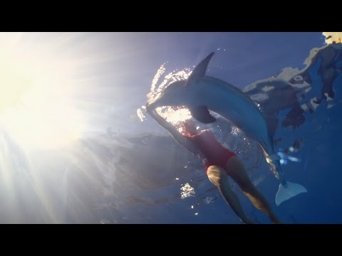 Dolphin Tale 2 (Featurette 'True Story')