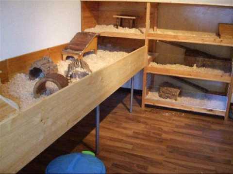 verwandte suchanfragen zu meerschweinchenk fige selber bauen. Black Bedroom Furniture Sets. Home Design Ideas