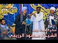 أجمل مديح من الشيخ | محمود الرزيقي | مداح السيدة زينب ج2
