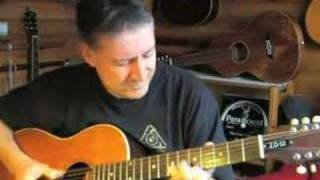 Wild Women Don't  Have The Blues - 12-string  blues