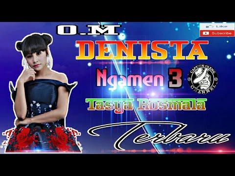 Tasya Rosmala - Ngamen 3 Om Denista (Cover)
