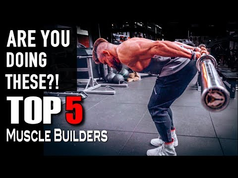 Diet plans - TOP 5 Muscle Building Exercises You Never Heard Of!!  Step by Step Tutorial (Lex Fitness)
