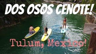 Dos Osos Cenote in Tulum, Mexico!