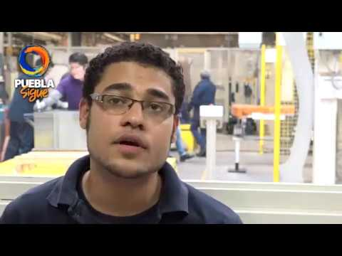 Creamos oportunidades de primer empleo para jóvenes: Tony Gali.