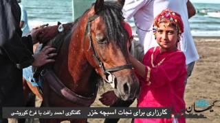 کیهان لندن - کارزاری برای نجات اسبچه خزر