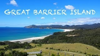 Great Barrier Island New Zealand  city images : Great Barrier Island - New Zealand