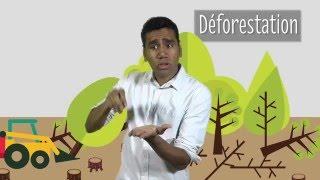 Les causes et conséquences du réchauffement climatique