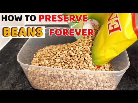How To Preserve Beans For As Long As You Wish • STORE BEANS FOREVER