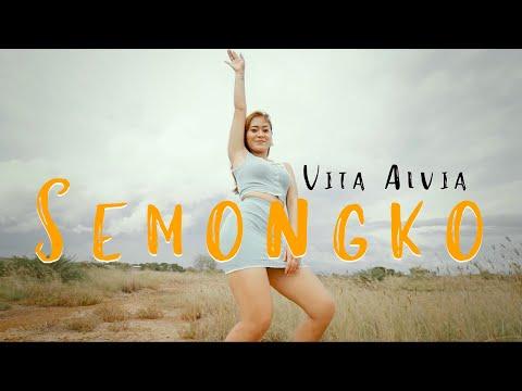 Vita Alvia - Dj Semongko Tarik Sis (Official Music Video ANEKA SAFARI)