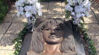 This is My Selena Quintanilla Perez Tribute a Artist Known for songs such as Coma La Flor, No Me Queda Mas, Bidi Bidi Bom Bom, Amor Prohibido, Dreaming Of You, and Si Una Vez. These are Places you can visit in Corpus Christi, Texas Selena's Home town to better experience her life and Death. In this video you will find her House growing up, Selena's Cemetary Grave, the Boutique and Hair Salon, Hotel where she was shot, Star on Music Walk of Fame, Washing Machine scene location from Selena Movie, various Selena Murals, and favorite places to eat (Whataburger and Olive Garden!)My Twitter ► https://twitter.com/justcrizSubscribe ► http://goo.gl/gdJw66Instagram ► http://goo.gl/t8IfjfFacebook ► http://goo.gl/xuTy9zGaming    ► http://goo.gl/Tlbil1