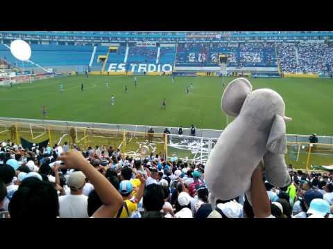 Local o visitante voy descontrolado - Alianza FC - La Ultra Blanca y Barra Brava 96 - Alianza