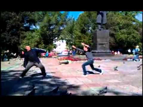 Russian pigeon fighting