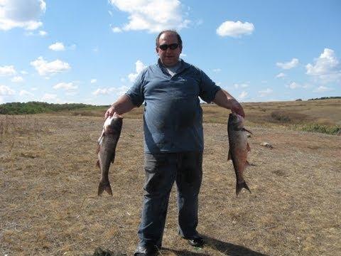 все о рыбалке как поймать толстолоба