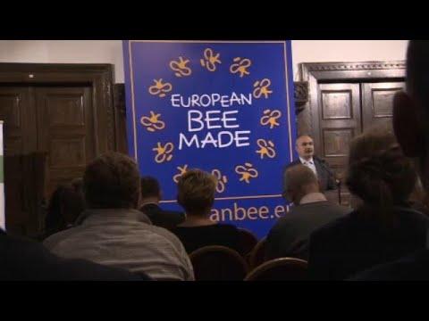 Δημιουργία Ένωσης μελισσοκόμων για τις ευρωπαϊκές μέλισσες   …