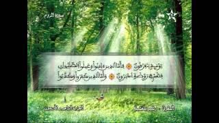 Recitation of the Sheikh Rachid belasheyyah تلاوة مميزة للمقرئ رشيد بلعشية الحزب 41