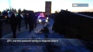 ДТП с участием школьного автобуса в Амурской области