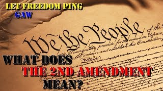 Let Freedom Ping recently hit 100 subs and is doing a giveaway.  Here is my VR to him about what the 2nd Amendment means to me...If you haven't checked out Let Freedom Ping...go do it now:https://www.youtube.com/channel/UCJAFqps9Uh_Wz7_Wo63BwyQ
