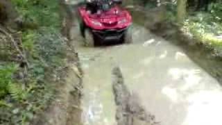 10. Suzuki Kingquad 400