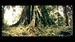 Watch Ong Bak 3 (2011) Online