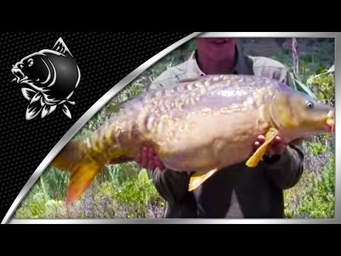 CARP FISHING IN GRAN CANARIA WITH ALAN BLAIR – NASH – THE HOLIDAY TAPES PART 1 – NASH TV