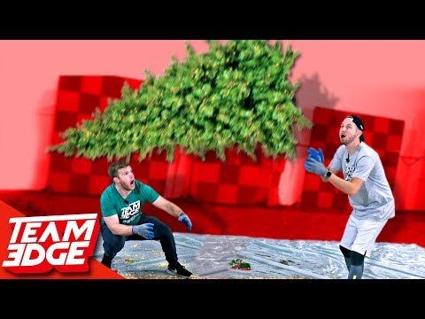 Christmas Tree Flip!! (видео)
