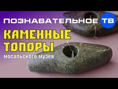 Неудобная история: Каменные топоры Мосальского музея (Познавательное ТВ Артём Войтенков) - DomaVideo.Ru
