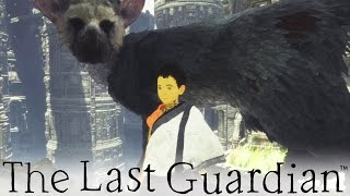 The Last Guardian - So Adorable! (8) full download video download mp3 download music download