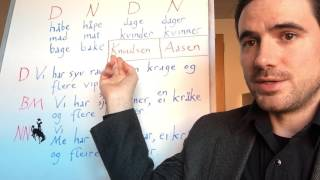 A look at the history behind why there are two different written standards of Norwegian (Nynorsk/ Landsmål and Bokmål/ Riksmål), with examples of some of the ...