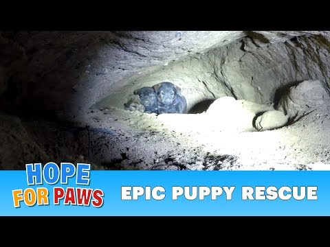 Epic puppy rescue - 18 feet into the earth!!!  Dangerous Hope For Paws rescue!