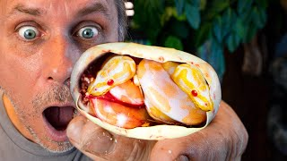 I GOT TWIN ALBINO SNAKES WHILE CUTTING SNAKE EGGS!! 20 FOOT SNAKE FUN!! | BRIAN BARCZYK by Brian Barczyk