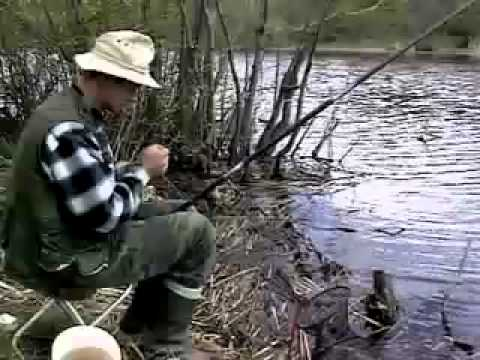 ловля плотвы весной на поплавочную удочку видео на реке и где его искать