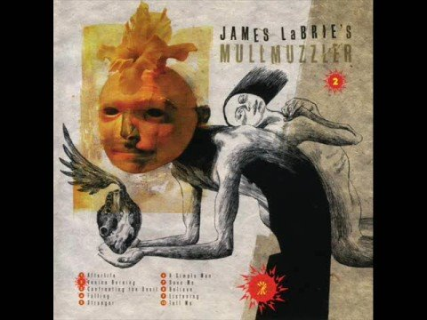 james labrie - One of my favourite songs by the lead singer of Dream Theater. It is included in James LaBrie's MullMuzzler album