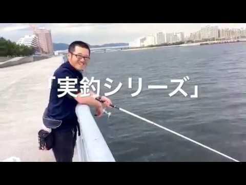【実釣シリーズ】芦屋浜でサビキはいけるのか??