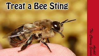 How to Treat a Bee Sting in Tamil