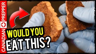 Survival SUPER FOOD | Doomsday Meat | Lasts 30 Years | Freeze Drying w/ Harvest Right