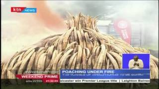President Uhuru Leads The Country In Burning Ivory As A Sign Towards The Fight Against Poaching