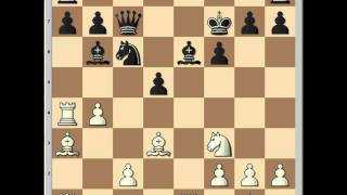 Carlsen vs Nikolic  Wijk aan Zee 2005