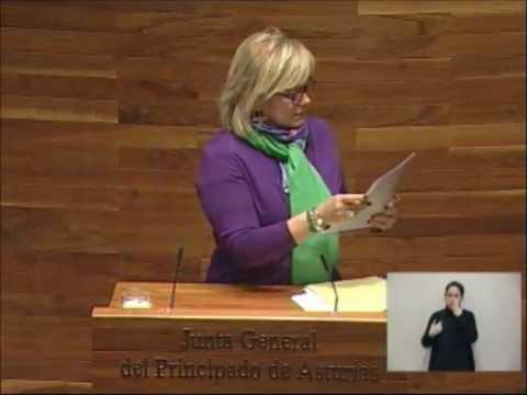 Mercedes Fernández defiende la gestión del PP sobre la minería