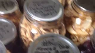VACUUM SEAL RECYCLED JARS IN A FOOD SAVER storage CANISTER Harvest Right