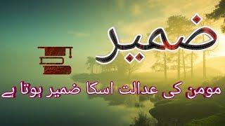 14 Best zameer Aqwal in Urdu / Hindi | Nafs or Zameer | By Golden Wordz.