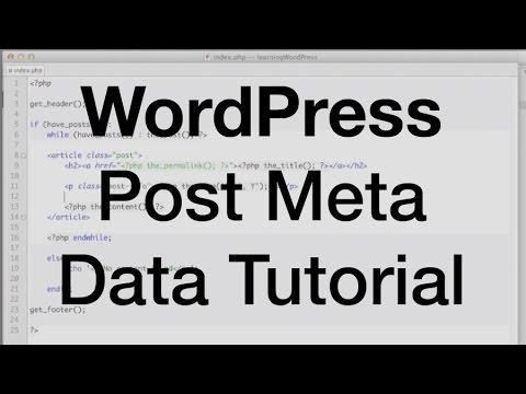 Learn about WordPress Post Meta Data