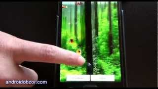 Aquarium 3d with piranhas LWP YouTube video