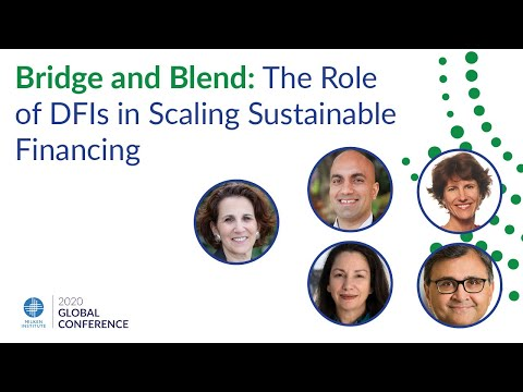 Bridge and Blend: The Role of DFIs in Scaling Sustainable Financing