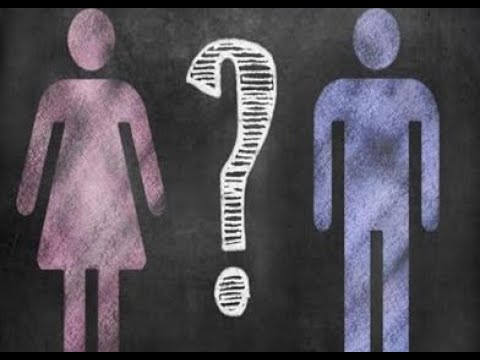 الاختلاط بين الرجال والنساء جدل متكرر.. هكذا حسمته دار الافتاء