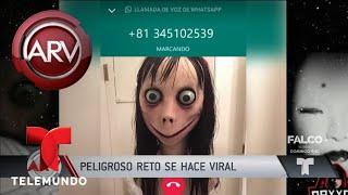 Video El aterrador reto del momo y su inminente peligro | Al Rojo Vivo | Telemundo MP3, 3GP, MP4, WEBM, AVI, FLV Agustus 2018