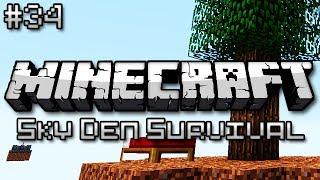 Minecraft: Sky Den Survival Ep. 34 - ENDER DRAGON!