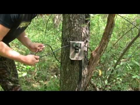 How to set up a trail camera/Trail Camera Setup